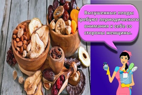 Высушенные плоды требуют периодического внимания к себе со стороны женщины.