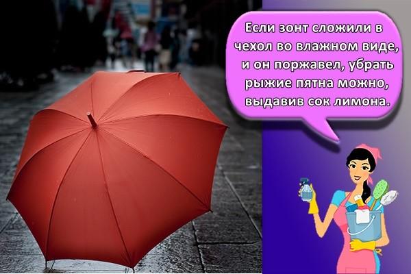 Если зонт сложили в чехол во влажном виде, и он поржавел, убрать рыжие пятна можно, выдавив сок лимона