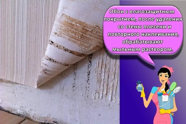 Обои с влагозащитным покрытием, после удаления со стены плесени и повторного наклеивания, обрабатывают мыльным раствором.