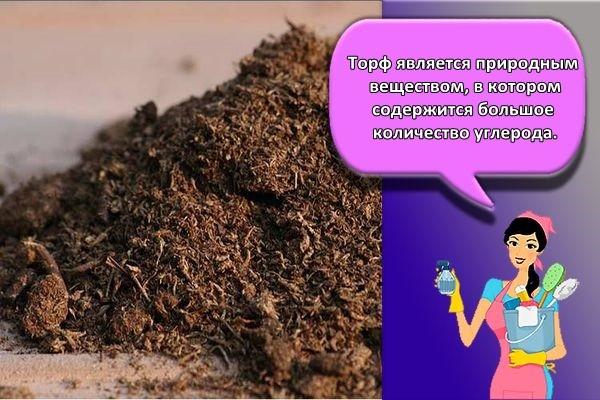 почва торф