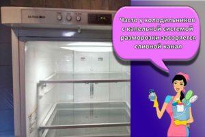 Инструкция, как размораживать холодильник правильно и особенности системы Ноу Фрост