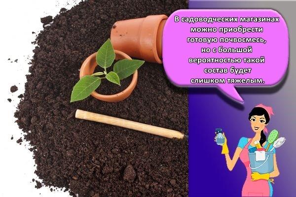 почва и грунт