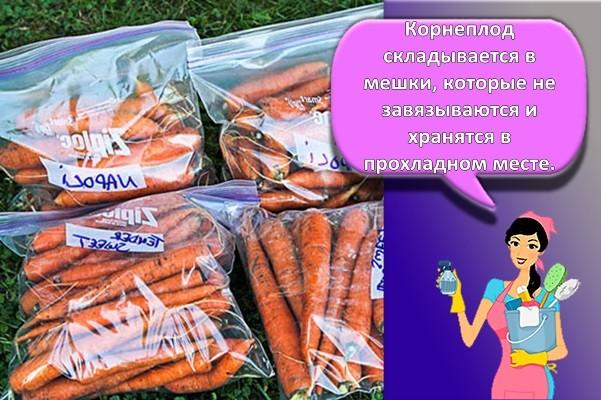 морковь в мешках