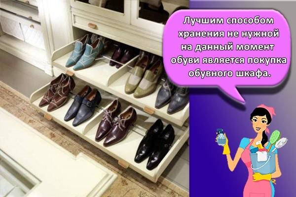 Лучшим способом хранения не нужной на данный момент обуви является покупка обувного шкафа