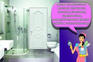 Какие двери лучше выбрать для ванной и туалета
