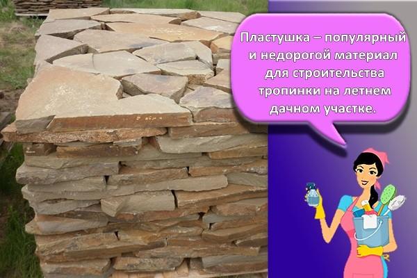 Пластушка – популярный и недорогой материал для строительства тропинки на летнем дачном участке.