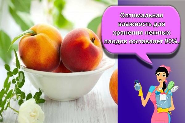Оптимальная влажность для хранения нежных плодов составляет 90%.