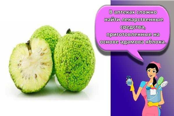В аптеках сложно найти лекарственные средства, приготовленные на основе адамова яблока.