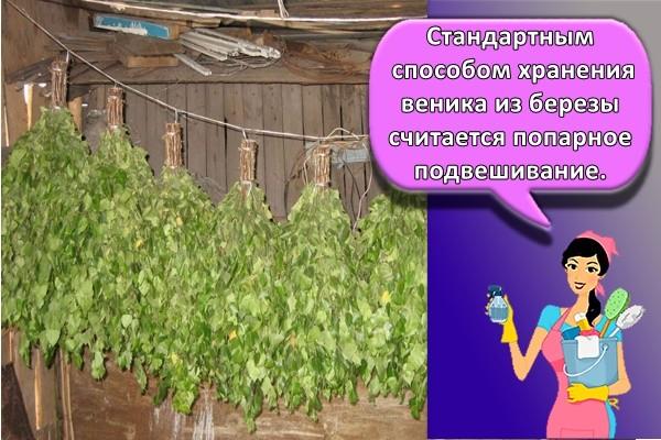 Стандартным способом хранения веника из березы считается попарное подвешивание.