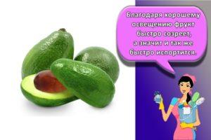 Сколько и как в домашних условиях хранить авокадо, лучшие способы