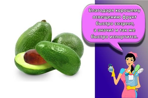 Благодаря хорошему освещению фрукт быстро созреет, а значит и так же быстро испортится