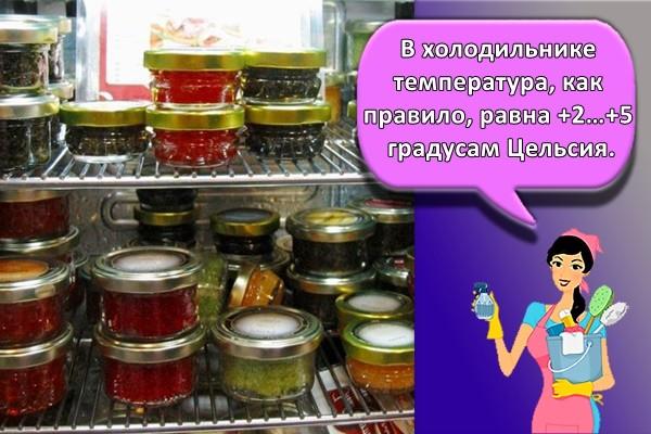 В холодильнике температура, как правило, равна +2…+5 градусам Цельсия.