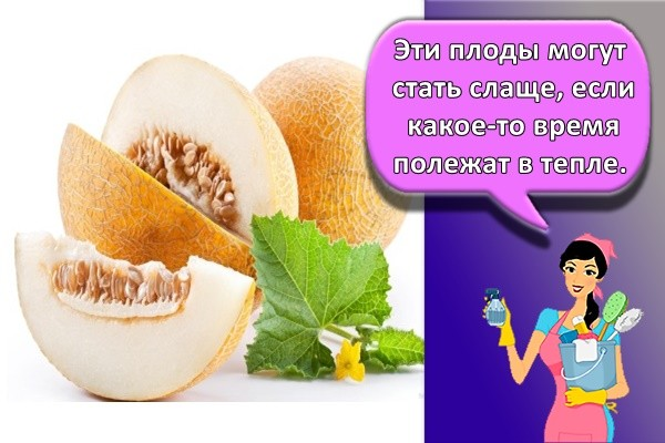 Эти плоды могут стать слаще, если какое-то время полежат в тепле.