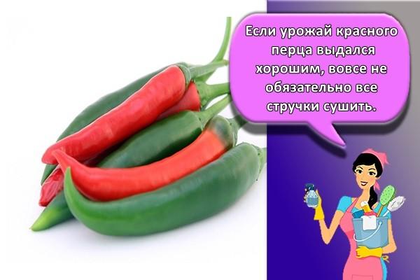 Если урожай красного перца выдался хорошим, вовсе не обязательно все стручки сушить.