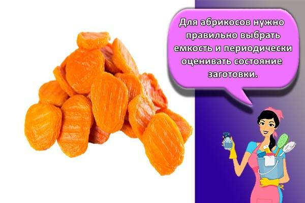 для абрикосов нужно правильно выбрать емкость и периодически оценивать состояние заготовки.