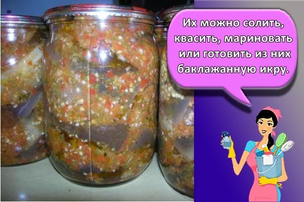 Их можно солить, квасить, мариновать или готовить из них баклажанную икру.