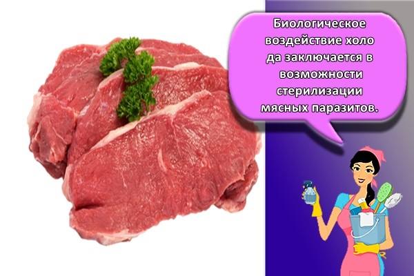 Биологическое воздействие холода заключается в возможности стерилизации мясных паразитов.