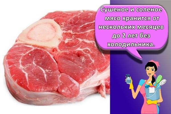 Сушеное и соленое мясо хранится от нескольких месяцев до 2 лет без холодильника.