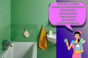 Какую краску лучше выбрать для стен в ванной комнате и технология отделки своими руками