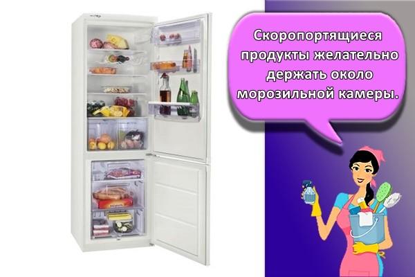 Скоропортящиеся продукты желательно держать около морозильной камеры.