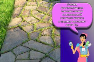 Особенности и выбор камня плитняка для садовых дорожек, инструкция укладки своими руками