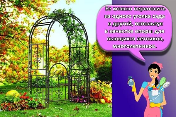 Ее можно переносить из одного уголка сада в другой, используя в качестве опоры для вьющихся летников, многолетников.