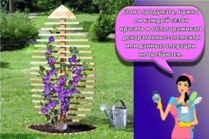 Формы шпалер для вьющихся растений и как изготовить своими руками