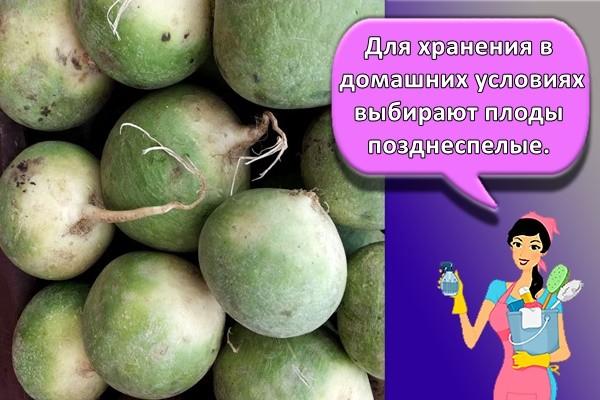 Для хранения в домашних условиях выбирают плоды позднеспелые.