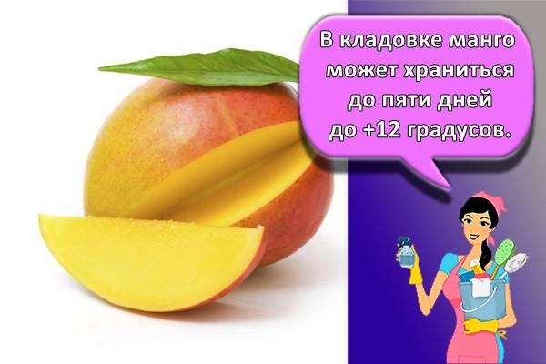 В кладовке манго может храниться до пяти дней до +12 градусов.