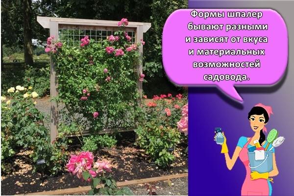 Формы шпалер бывают разными и зависят от вкуса и материальных возможностей садовода