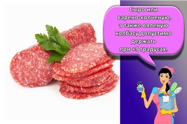 Сыро или варено-копченую, а также вяленую колбасу допустимо держать при +9 градусах.