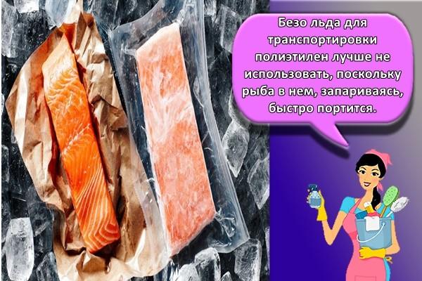 Безо льда для транспортировки полиэтилен лучше не использовать, поскольку рыба в нем, запариваясь, быстро портится.