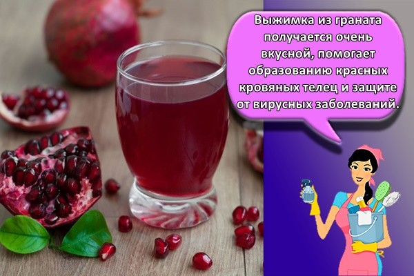 Выжимка из граната получается очень вкусной, помогает образованию красных кровяных телец и защите от вирусных заболеваний.