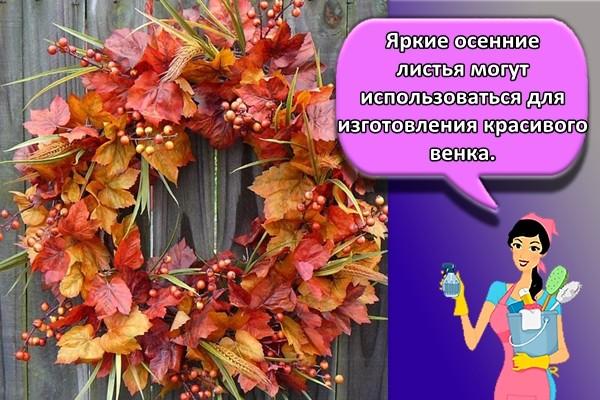 Яркие осенние листья могут использоваться для изготовления красивого венка.