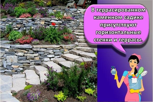 В террасированном каменном садике присутствуют горизонтальные стенки и террасы.