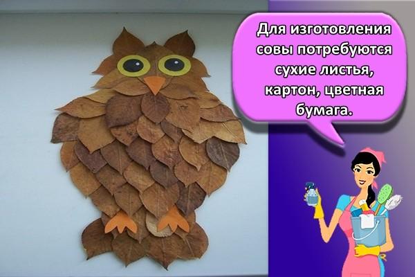 Для изготовления совы потребуются сухие листья, картон, цветная бумага.