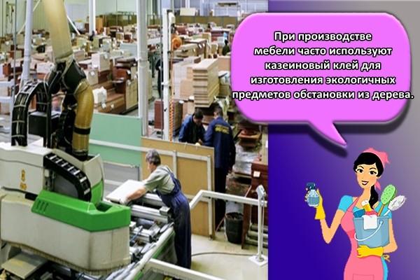 При производстве мебели часто используют казеиновый клей для изготовления экологичных предметов обстановки из дерева.