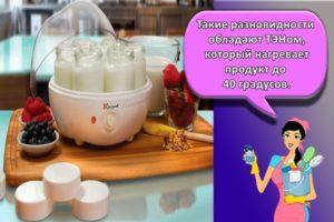 Как правильно выбрать йогуртницу, что важно знать и обзор лучших моделей
