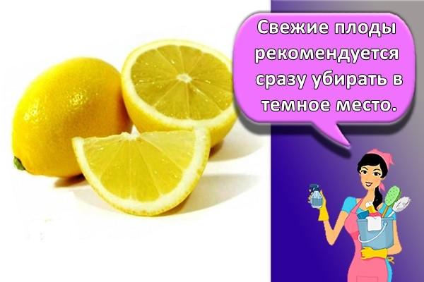 Свежие плоды рекомендуется сразу убирать в темное место.