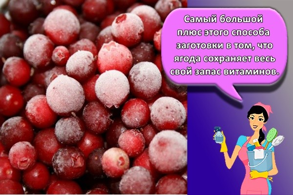 Самый большой плюс этого способа заготовки в том, что ягода сохраняет весь свой запас витаминов