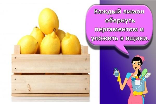 Каждый лимон обернуть пергаментом и уложить в ящики.