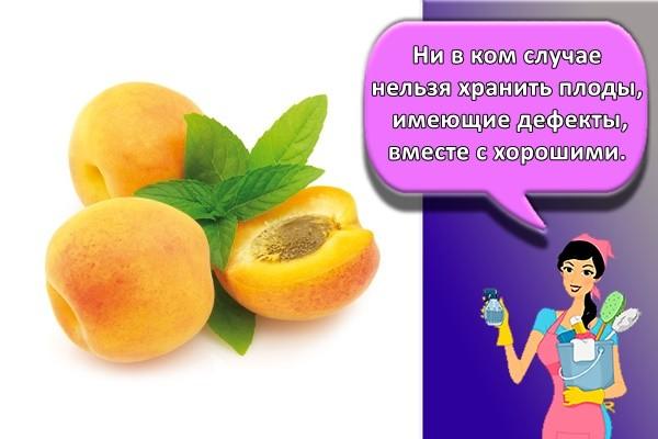 Ни в ком случае нельзя хранить плоды, имеющие дефекты, вместе с хорошими.