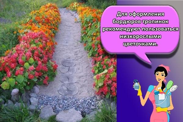 Для оформления бордюров тропинок рекомендуют пользоваться низкорослыми цветочками.