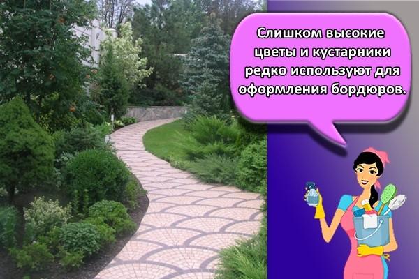 Слишком высокие цветы и кустарники редко используют для оформления бордюров.