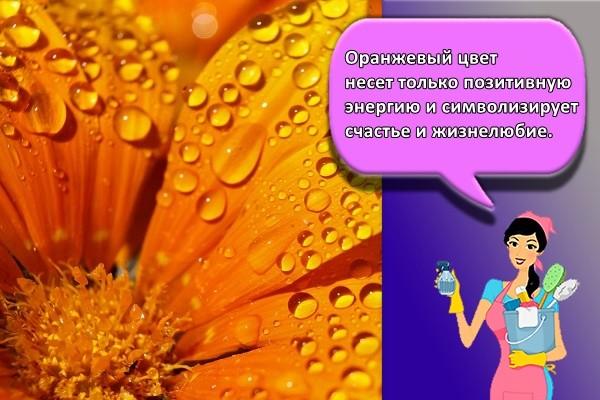 Оранжевый цвет несет только позитивную энергию и символизирует счастье и жизнелюбие.