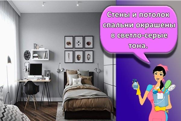 Стены и потолок спальни окрашены в светло-серые тона