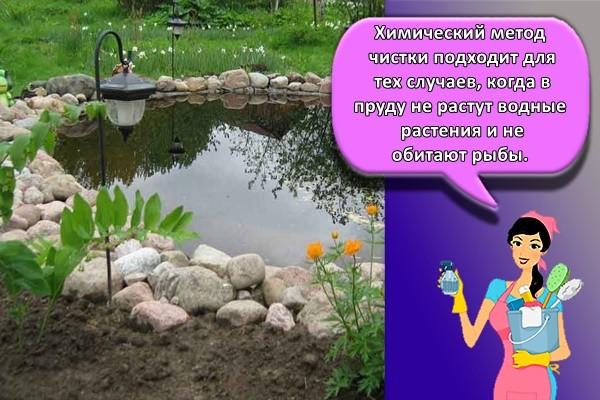 Химический метод чистки подходит для тех случаев, когда в пруду не растут водные растения и не обитают рыбы.