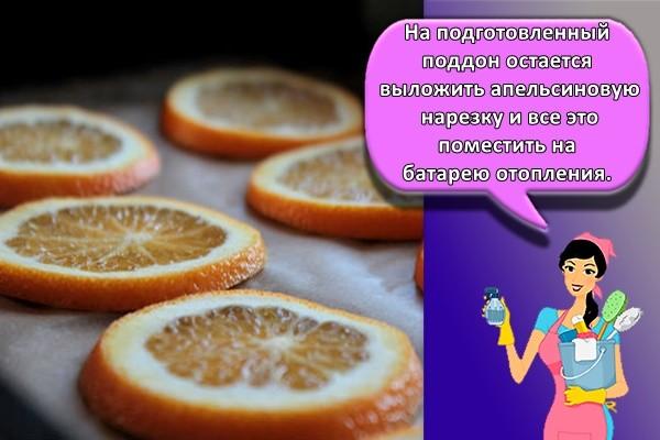 На подготовленный поддон остается выложить апельсиновую нарезку и все это поместить на батарею отопления
