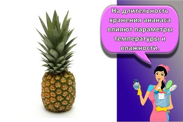 свежий ананас