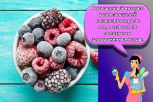 Сколько можно и как правильно хранить в морозильной камере замороженные ягоды